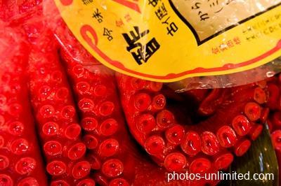 4-16-octopus-on-display-tokyo-japan