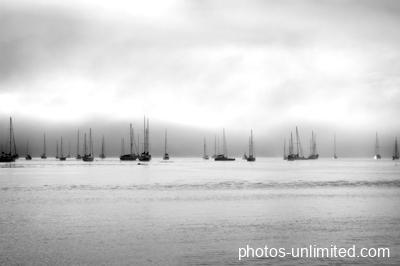7-29-sail-boats-new-zealand