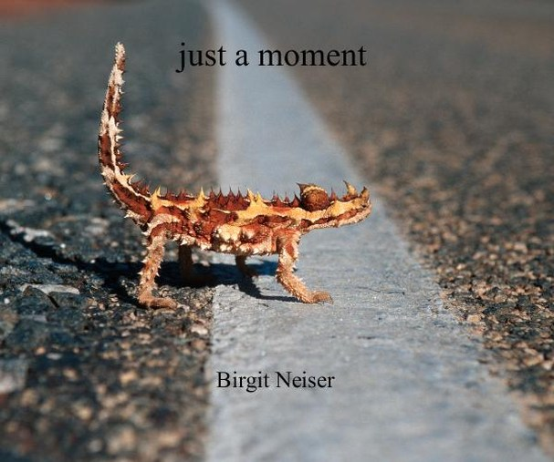 Just-a-moment-birgit-neiser